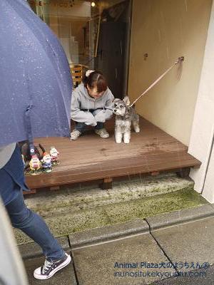 傘の社会化②