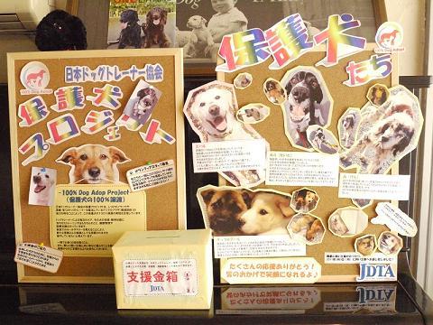 犬のようちえん®広尾教室_保護犬プロジェクト