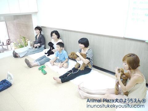 子犬のしつけ_犬のようちえん®広尾教室_授業参観_グルーミング