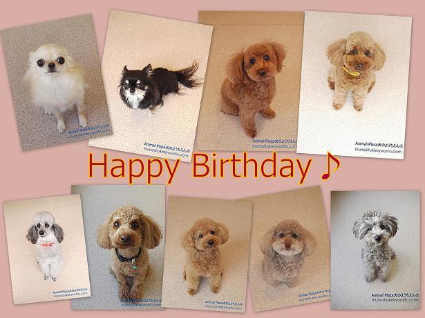 Birthday-3