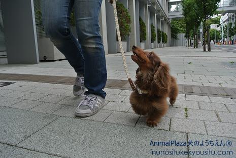 一緒に歩くのって楽しい!