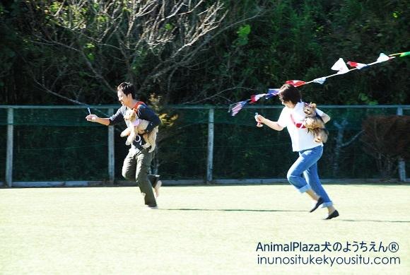 子犬のしつけ_犬のようちえん®広尾教室_秋の運動会
